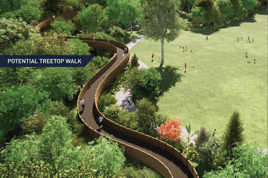 Proposed Treetop Walk - Hamilton Gardens