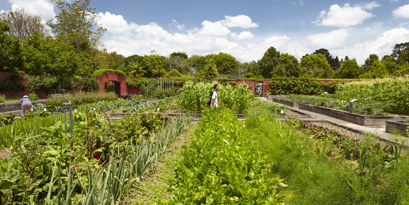 Kitchen Garden; Kitchen Garden; Kitchen Garden ...