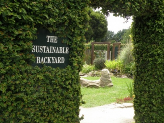 Sustainable Backyard